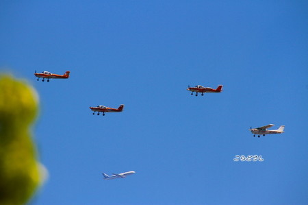 29IMG_3885Super Wings.jpg